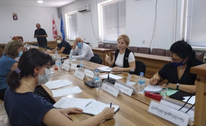 Meeting of the working group in Terjola