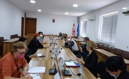 Discussion of the plans at a meeting of the Terjola working group
