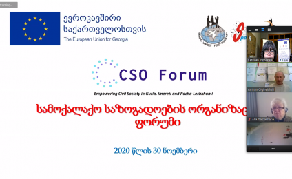 Online Meeting of the Forum for Civil Society Organizations
